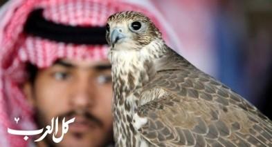 صور: مهرجان خاصّ للصقور في الرياض