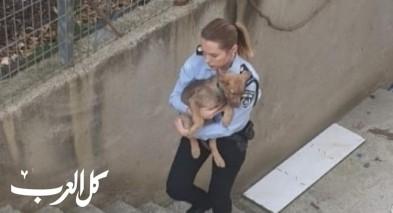 الشرطة تنقذ كلبين وتعتقل شابًا في الجديدة المكر