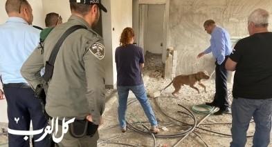 جديدة المكر: اعتقال شاب بشبهة احتجاز كلبين بظروف قاسية