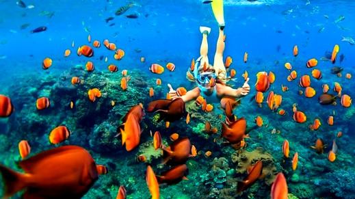 السياحة في جزيرة بورا بورا