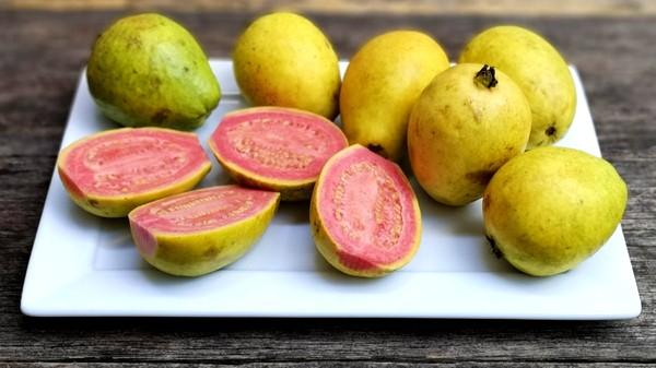 ما هي فوائد فاكهة الجوافة للجسم؟