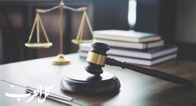 الحكم بالسجن 45 شهرًا على سارق هاتف المذيعة شارون