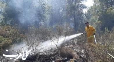 شفاعمرو: إندلاع حريق كبير في منطقة وعرية