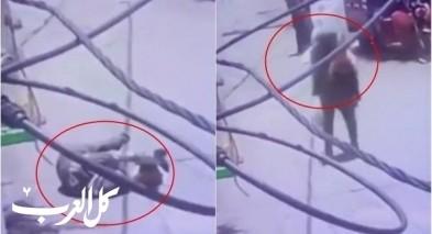 فيديو| لبنان: الرصاص الطائش يقتل الأم ورود