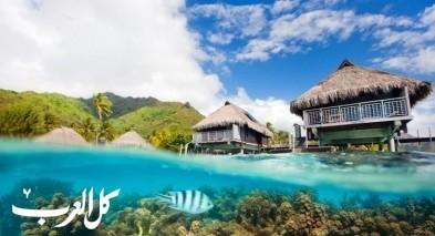 جزيرة موريا الفرنسيّة: سحر وهدوء الطبيعة