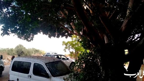 توقيف سائقين عرب ينقلون عمالا من الضفة