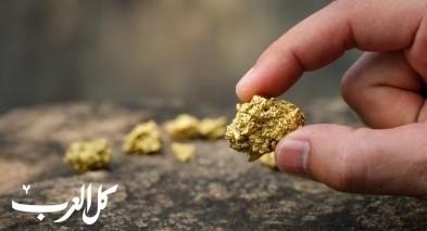 استراليا: عائلة تعثر على قطعة ذهبية نادرة