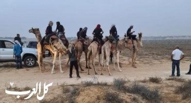 النقب| تنظيم سباق الهجن في الخزعلي
