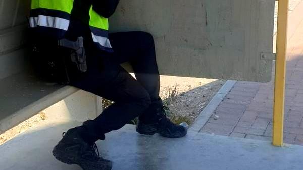 الضفة: تحرير 634 مخالفة مرورية خلال نهاية الأسبوع
