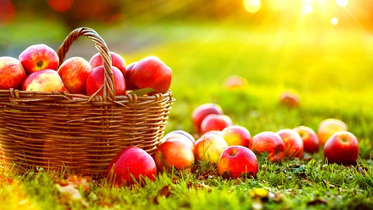 معلومات سريعة  تعرّفوا على فوائد التفاح