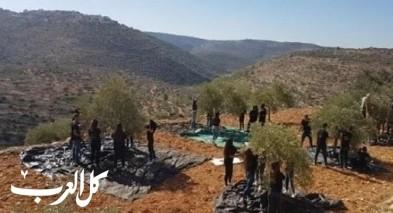 مزارعون فلسطينيّون يقدمون التماسا للعليا