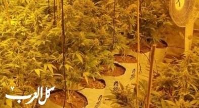 المركز: إتهام رجل بتفعيل مختبر لزراعة المخدرات
