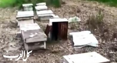 اعتقال شاب من سكان الناصرة بشبهة سرقة 18 قرص عسل