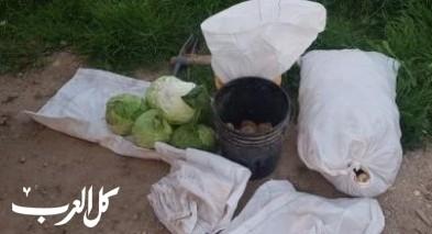 اعتقال شابين من شقيب السلام بشبهة سرقة منتوجات زراعية