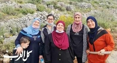 مجد الكروم: يوم تطوعي بمنطقة ابو سراج