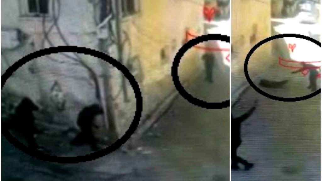 فيديو: اطلاق نار مكثف على شاب من الفريديس!