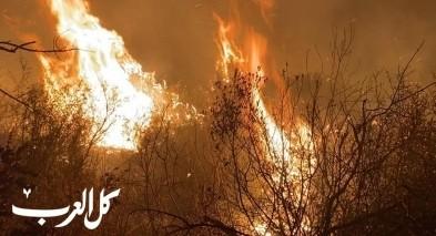 أم الفحم: اندلاع حريق في منطقة حرشية