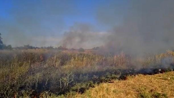 اندلاع حريق بمنطقة أشواك قرب الطيبة