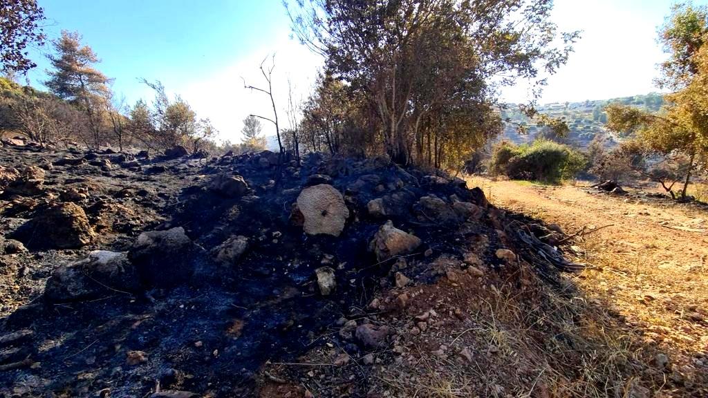 القدس: تجدد الحريق في مستوطنة تسور