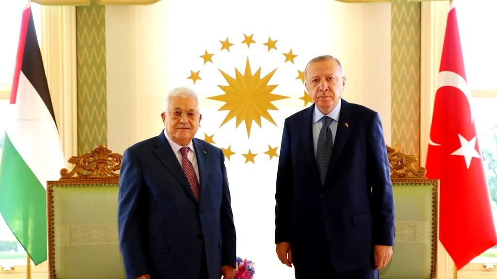 عباس يلتقي نظيره التركي باسطنبول