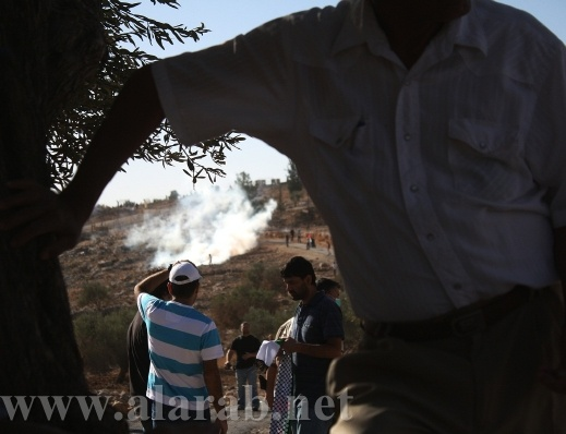 إصابة العشرات بحالات اختناق في مسيرة بلعين ضد الممارسات الاسرائيلية