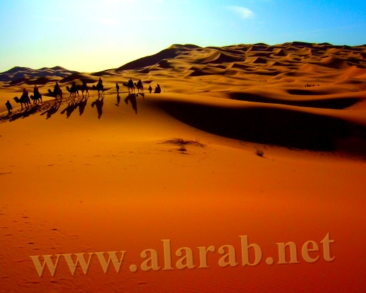 المغرب: بحر ورمل وحيوانات