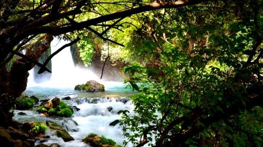 رحلة مشوقة إلى شلالات بانياس المميزة