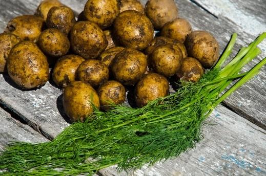 ميني بطاطا بتتبيلة الأعشاب الشهية..صحة