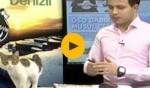 فيديو طريف: قطة تقتحم الأستديو