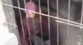 بالفيديو: امرأة وزوجها يسجنون الجدة في قفص