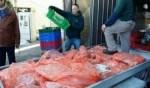 كفركنا: ضبط 3.5 طن لحوم و1200 بيضة مهربة