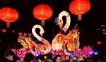 الأضواء الملوّنة تزيّن ربيع جينان الصينية