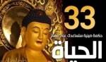 أكثر 33 حكمة صينية تساعدك في فهم الحياة