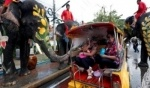 متعة في مهرجان الفيلة في تايلاند
