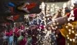 نيبال: طقوس في مهرجان بيشاك أسنان