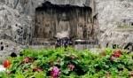 زهور نادرة في كهوف لونغمن..صور