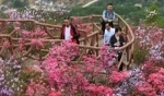 الربيع يتجلى بأبهى صوره في الصين..صور