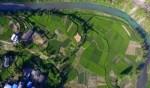 الصين: صور جوية مذهلة لمزارع الشاي