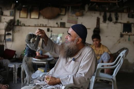 صور.. فلسطيني من غزّة يصادق قردًا
