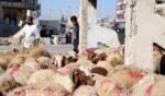 سورية: اتخاذ كل الإجراءات بحمص والحسكة