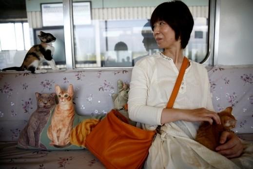 قطار ومقهى للقطط في اليابان