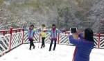 بكين تستقبل الثلوج الأولى!