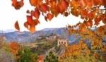 سور الصين يلبس حلّته الخريفية