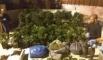 القدس: الكشف عن معمل مخدرات ضخم