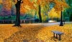 زوروا حديقة بوسطن في الولايات المتحدة