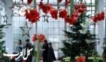 معرض الكريسماس في فرانكفورت