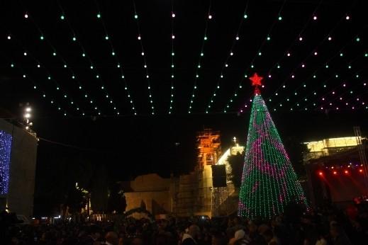 شجرة عيد الميلاد في بيت لحم