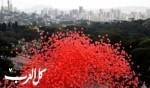 اللون الأحمر يغطي ساو باولو البرازيلية