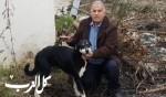 الطيرة: احسان ناصر يتبرع ببناية كاملة للعناية بالكلاب