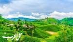 اماكن يمكنك زيارتها بسريلانكا